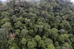 Borneo rainforest -- sabah_aerial_1644