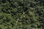 River in Borneo -- sabah_aerial_1671