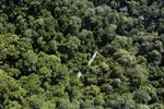 River in Borneo -- sabah_aerial_1672