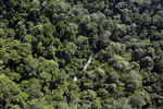 River in Borneo -- sabah_aerial_1673