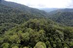Borneo rainforest -- sabah_aerial_1684