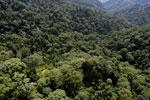 Borneo rainforest -- sabah_aerial_1693