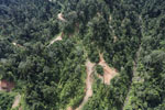 Industrial logging in Borneo -- sabah_aerial_1723