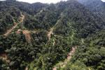 Industrial logging in Malaysian Borneo -- sabah_aerial_1725