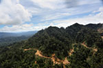 Industrially logged rainforest -- sabah_aerial_1727
