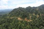 Industrial logging in Malaysian Borneo -- sabah_aerial_1730