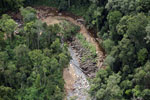 Logs in a river bed in Borneo -- sabah_aerial_1739