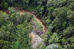 Logs in a river bed in Borneo -- sabah_aerial_1742
