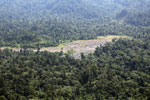 Rainforest log dump -- sabah_aerial_1764