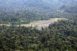 Rainforest log dump -- sabah_aerial_1764