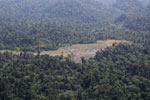 Rainforest log dump -- sabah_aerial_1765