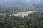 Rainforest log dump -- sabah_aerial_1766