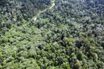 Borneo rainforest -- sabah_aerial_1768