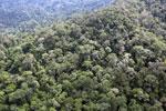 Borneo rainforest -- sabah_aerial_1769