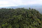 Borneo rainforest -- sabah_aerial_1776