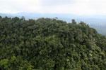 Borneo rainforest -- sabah_aerial_1779