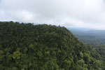 Borneo rainforest -- sabah_aerial_1782