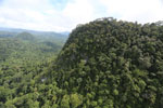 Borneo rainforest -- sabah_aerial_1783