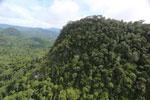 Borneo rainforest -- sabah_aerial_1785