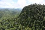 Borneo rainforest -- sabah_aerial_1786