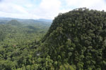 Borneo rainforest -- sabah_aerial_1787