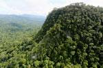 Borneo rainforest -- sabah_aerial_1789