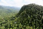 Borneo rainforest -- sabah_aerial_1790