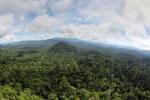 Borneo rainforest -- sabah_aerial_1794