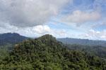 Borneo rainforest -- sabah_aerial_1797
