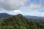 Borneo rainforest -- sabah_aerial_1798
