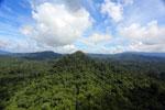 Borneo rainforest -- sabah_aerial_1799