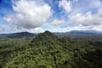 Borneo rainforest -- sabah_aerial_1803