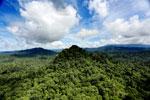 Borneo rainforest -- sabah_aerial_1805