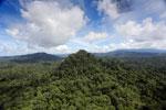 Borneo rainforest -- sabah_aerial_1807