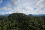 Borneo rainforest -- sabah_aerial_1812