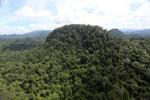 Borneo rainforest -- sabah_aerial_1813