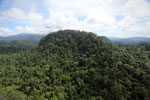 Borneo rainforest -- sabah_aerial_1815