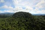 Borneo rainforest -- sabah_aerial_1816