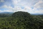 Borneo rainforest -- sabah_aerial_1817