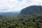 Borneo rainforest -- sabah_aerial_1818