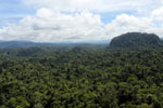 Borneo rainforest -- sabah_aerial_1819