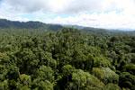 Borneo rainforest -- sabah_aerial_1824