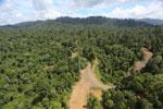 Logging operation in Borneo -- sabah_aerial_1826