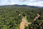 Logging operation in Borneo -- sabah_aerial_1828