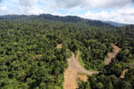 Logging operation in Borneo -- sabah_aerial_1829