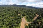 Logging operation in Borneo -- sabah_aerial_1829