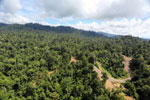 Logging operation in Borneo -- sabah_aerial_1833
