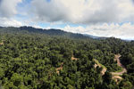 Logging operation in Borneo -- sabah_aerial_1835