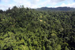Selectively logged forest in Borneo -- sabah_aerial_1837