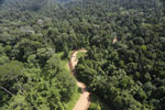 Borneo river -- sabah_aerial_1842